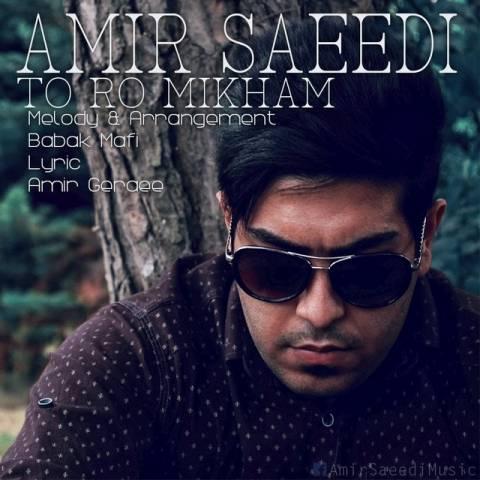 دانلود آهنگ امیر سعیدی به نام تورو میخوام