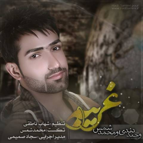 دانلود آهنگ وحید دندی و محمد شمس به نام غریبه