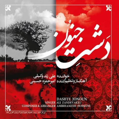 دانلود آلبوم جدید علی زندوکیلی به نام دشت جنون