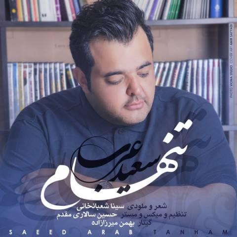 دانلود آهنگ سعید عرب به نام تنهام