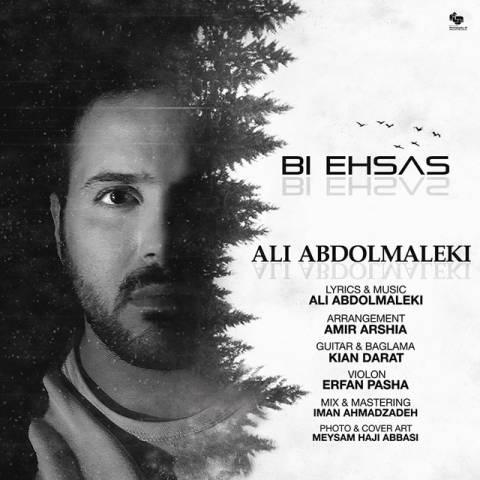 دانلود آهنگ جدید علی عبدالمالکی به نام بی احساس