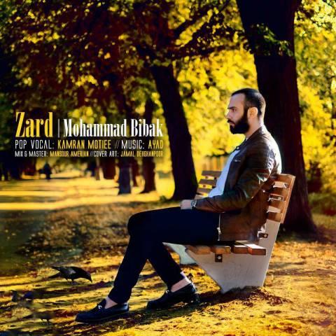 دانلود موزیک ویدئو محمد بی باک به نام زرد