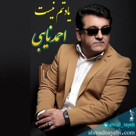 دانلود آهنگ احمد نایبی به نام یادتم نیست