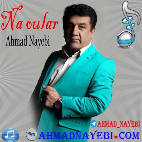 دانلود آهنگ احمد نایبی به نام نه اولار