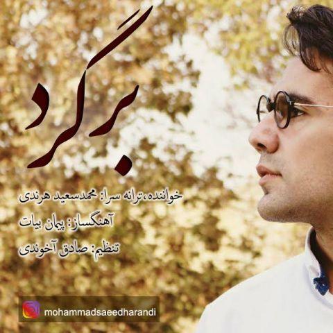 دانلود آهنگ محمد سعید هرندی به نام برگرد