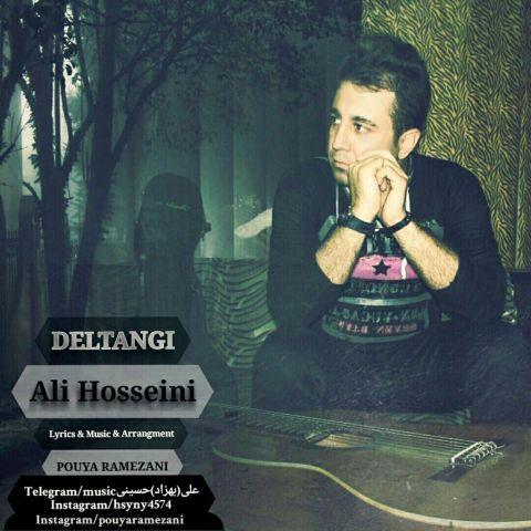 دانلود آهنگ علی حسینی به نام دلتنگی