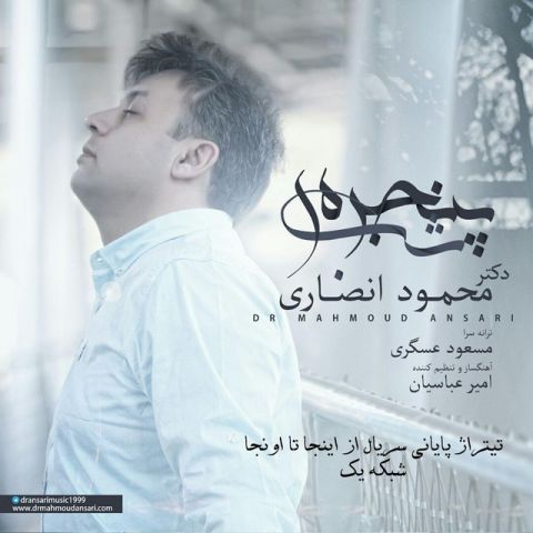 دانلود آهنگ دکتر محمود انصاری به نام پنجره ی شب