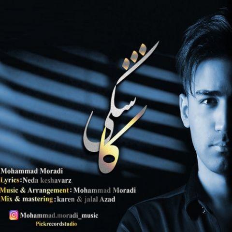 دانلود آهنگ محمد مرادی به نام کاشکی