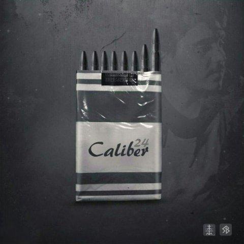 دانلود آلبوم Various Artists به نام کالیبره 24
