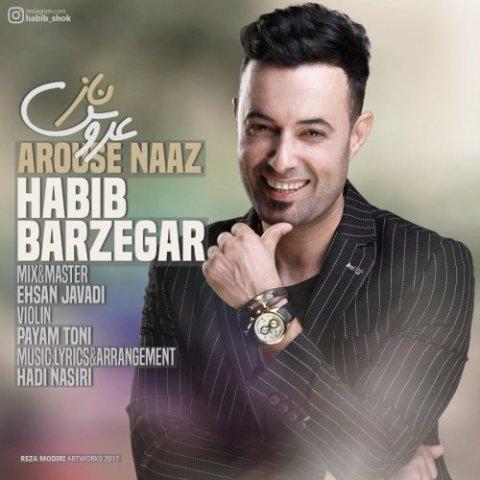دانلود آهنگ جدید حبیب برزگر به نام عروس ناز