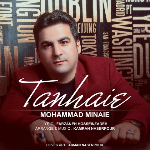 Mohammad Minaie&nbspTanhaei
