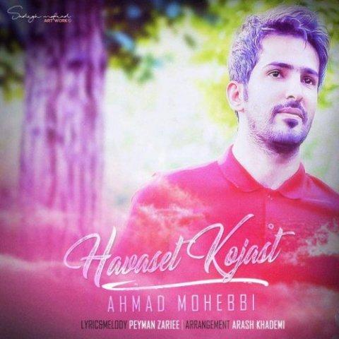 دانلود آهنگ احمد محبی به نام حواست کجاست