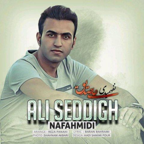 دانلود آهنگ علی صدیق به نام نفهمیدی