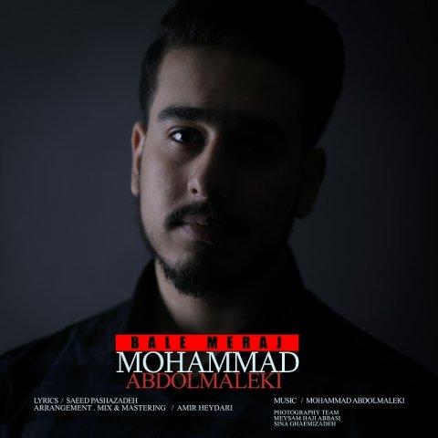 دانلود آهنگ محمد عبدالمالکی به نام بال معراج(سامان فیلم)