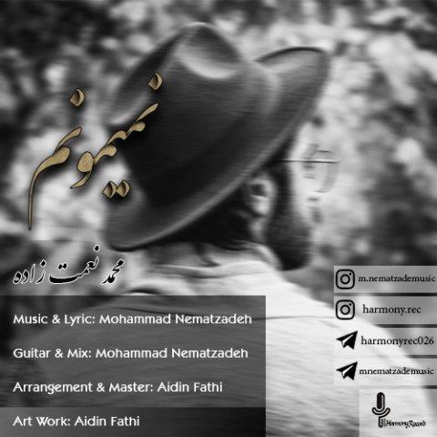 دانلود آهنگ محمد نعمت زاده به نام نمیتونم