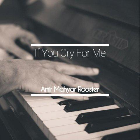 دانلود آهنگ امیر مهیار روستر به نام اگه برام گریه کنی