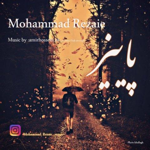 دانلود آهنگ محمد رضایی به نام پاییز