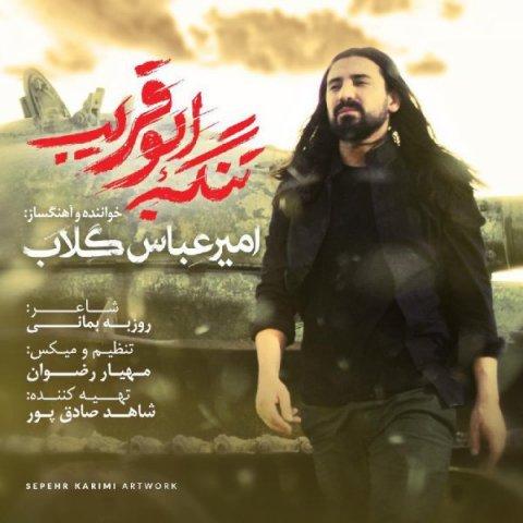 عکس دانلود آهنگ جدید امیر عباس گلاب به نام تنگه ابوقریب