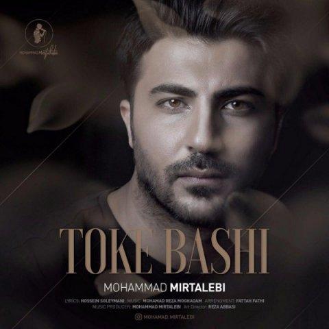 Mohammad Mirtalebi&nbspToke Bashi