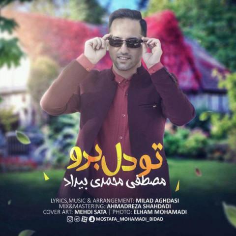 مصطفی محمدی بیداد تو دل برو | دانلود آهنگ مصطفی محمدی بیداد به نام تو دل برو