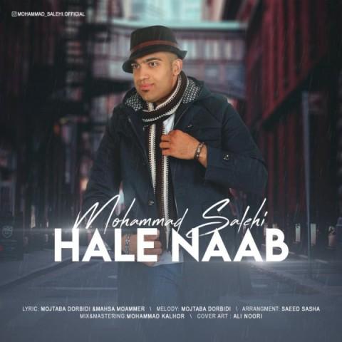 محمد صالحی حال ناب | دانلود آهنگ محمد صالحی به نام حال ناب