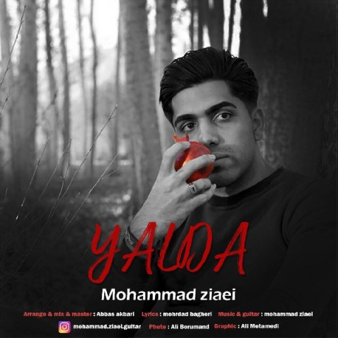 محمد ضیایی یلدا   دانلود آهنگ محمد ضیایی به نام یلدا