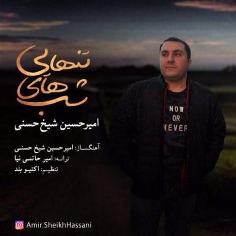 امیرحسین شیخ حسنی شب های تنهایی   دانلود آهنگ امیرحسین شیخ حسنی به نام شب های تنهایی