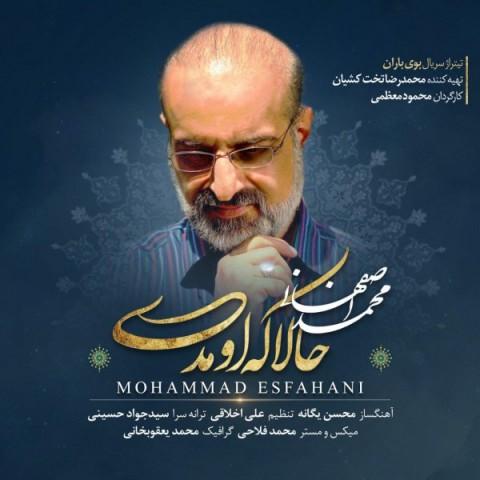 محمد اصفهانی حالا که اومدی | دانلود آهنگ محمد اصفهانی به نام حالا که اومدی