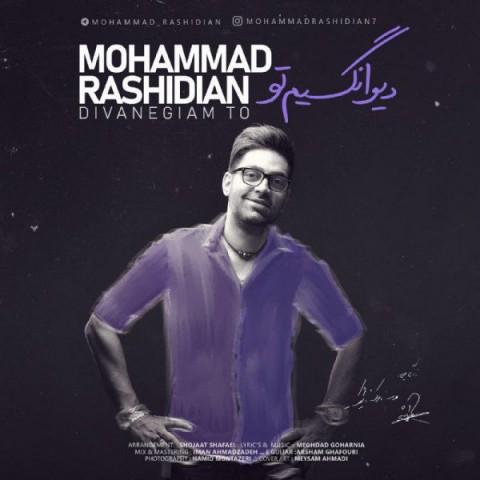 محمد رشیدیان دیوانگیم تو | دانلود آهنگ محمد رشیدیان به نام دیوانگیم تو