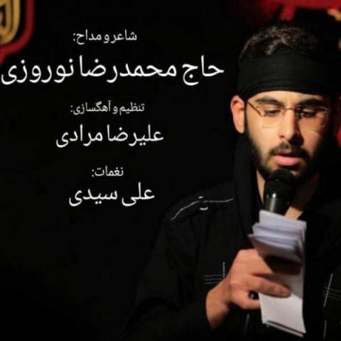 محمدرضا نوروزی عاشق هوشیار | دانلود آهنگ محمدرضا نوروزی به نام عاشق هوشیار