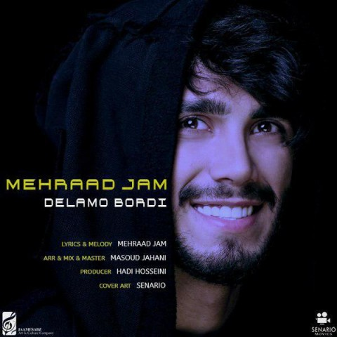 مهراد جم دلمو بردی، دانلود آهنگ جدید مهراد جم دلمو بردی + متن ترانه