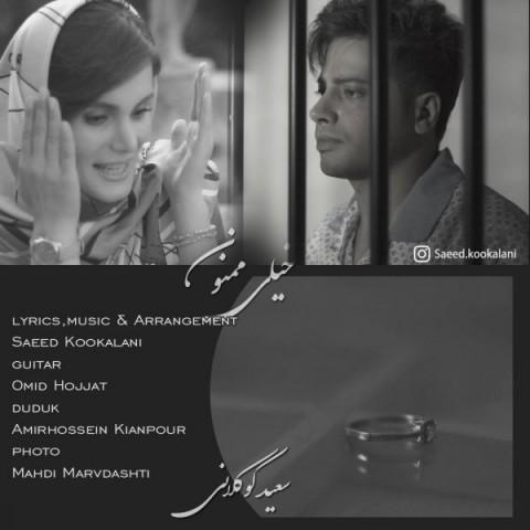دانلود آهنگ جدید سعید کوکلانی خیلی ممنون
