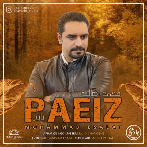 دانلود آهنگ جدید محمد اصالت پاییز