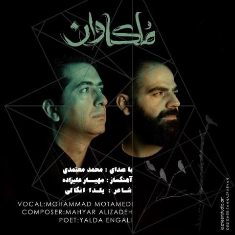 محمد معتمدی ملکاوان، دانلود آهنگ جدید محمد معتمدی ملکاوان + متن ترانه
