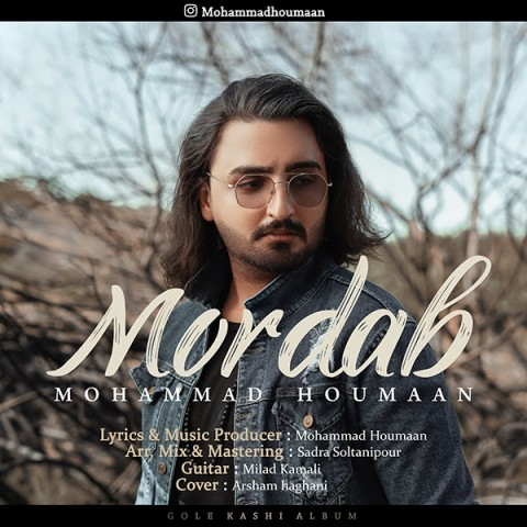دانلود آهنگ جدید محمد هومان مرداب