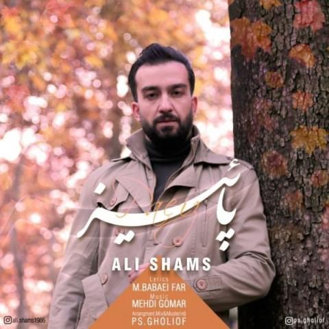 دانلود آهنگ جدید علی شمس پاییز