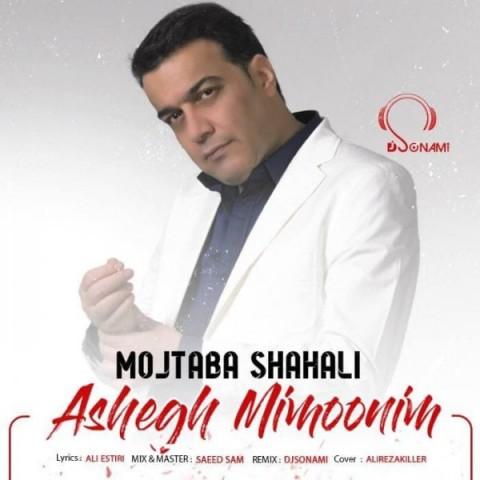 دانلود ریمیکس جدید مجتبی شاه علی عاشق میمونیم