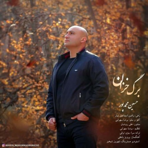 دانلود آهنگ جدید حسین محمد پور برگ خزان