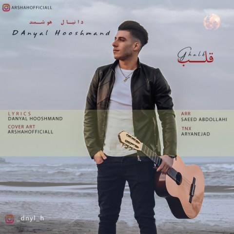 دانلود آهنگ جدید دانیال هوشمند قلب