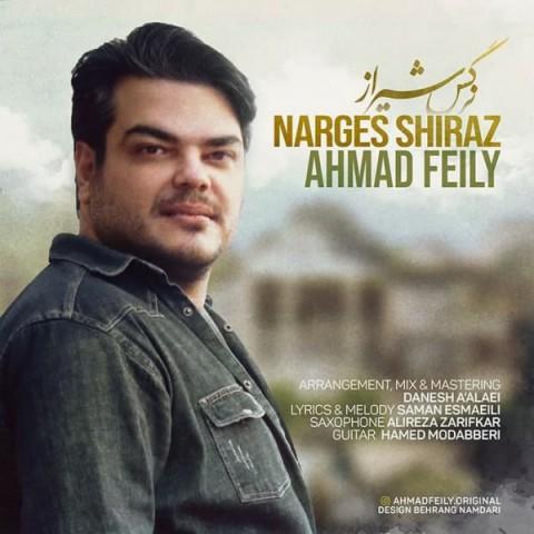 دانلود آهنگ جدید احمد فیلی نرگس شیراز