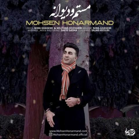دانلود آهنگ جدید محسن هنرمند مستم و دیوانه