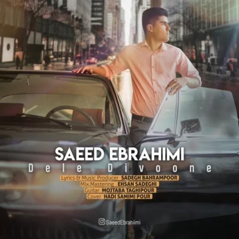 دانلود آهنگ جدید سعید ابراهیمی دل دیوونه