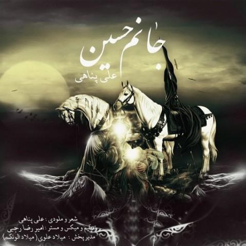 دانلود آهنگ جدید علی پناهی جانم حسین